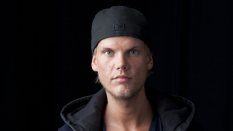 the earnings of avicii high net worth personalities. Black Bedroom Furniture Sets. Home Design Ideas